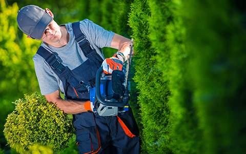 Landscape Business Insurance